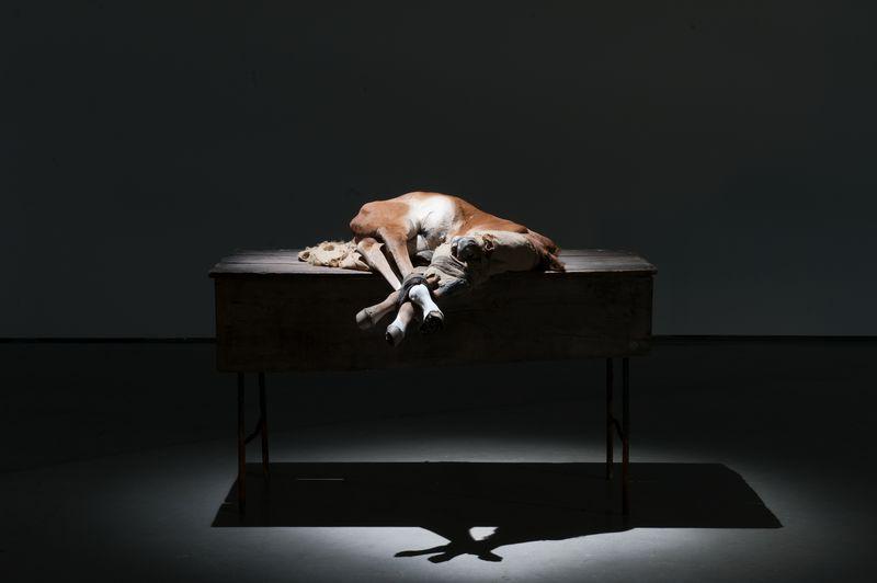 Artwork related to exhibition: Berlinde De Bruyckere  No Life Lost