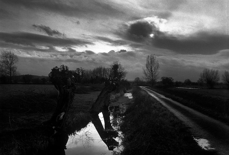 The Somerset Levels, near Glastonbury