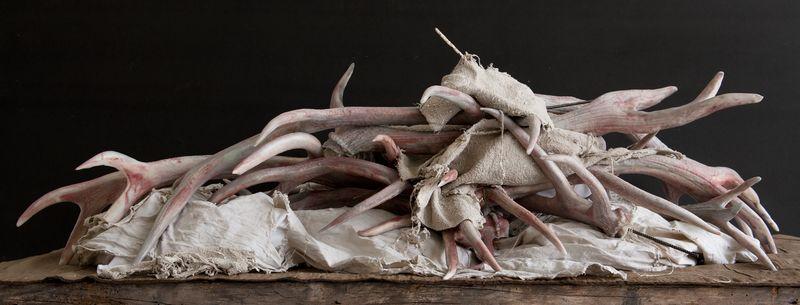 Artwork related to exhibition: Berlinde De Bruyckere  Three Sculptures