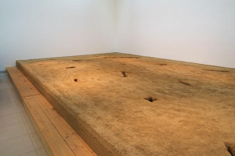 Artists — Subodh Gupta - Hauser & Wirth