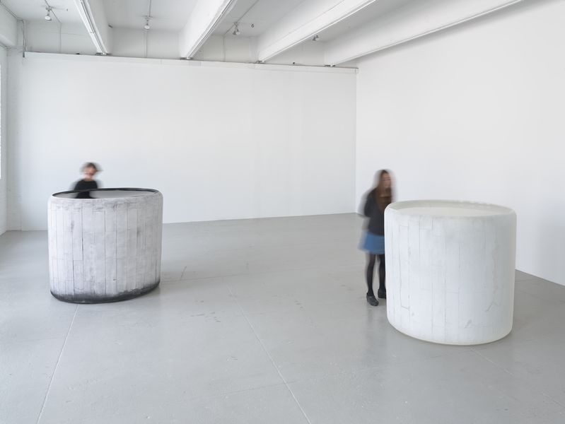 Artwork related to exhibition: Roni Horn