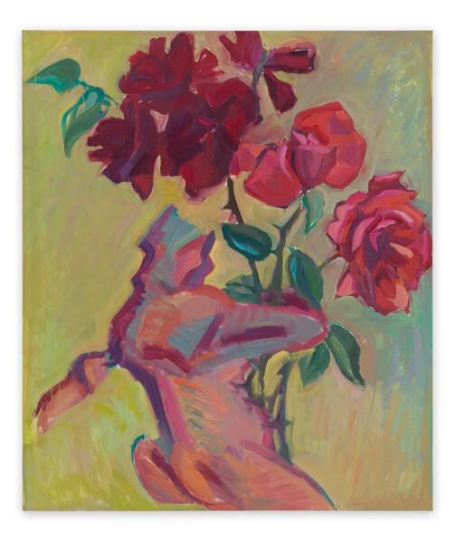 koch rose minden