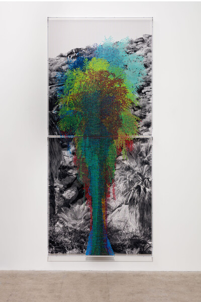 FIG. 3 'Numbers and Trees: Palm Canyon, Palm Trees Series 2, Tree #10, Tübatulabal,' 2019. Acrylic sheet, acrylic paint, and photograph, 2 parts: 145 x 64 x 5 3/4 in. (368.3 x 162.6 x 14.6 cm) overall. Photo: Fredrik Nilsen