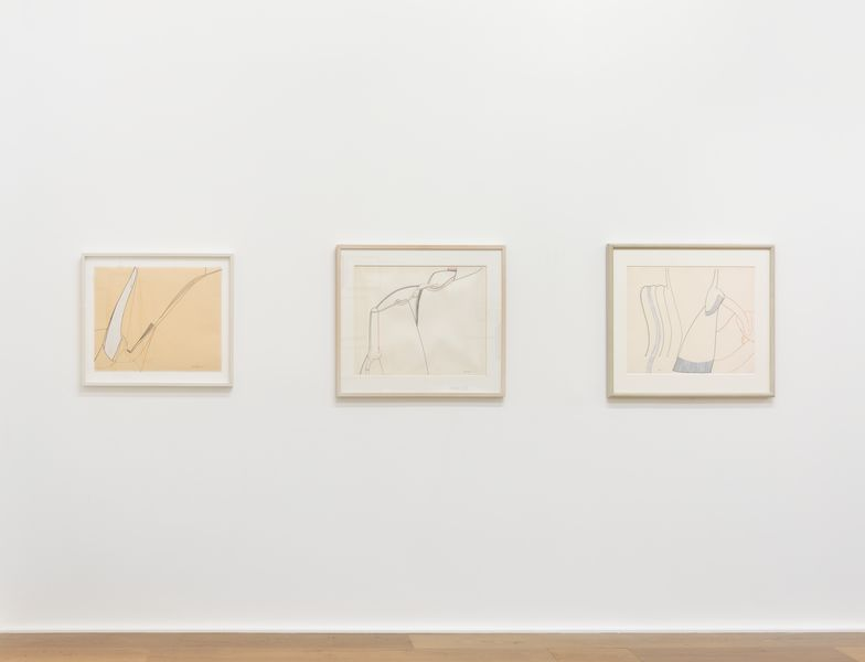 Eva Hesse s Wanton Duality  Liquidity and Compression in the Mechanical  Drawings of 1965 b5c4b0d86b