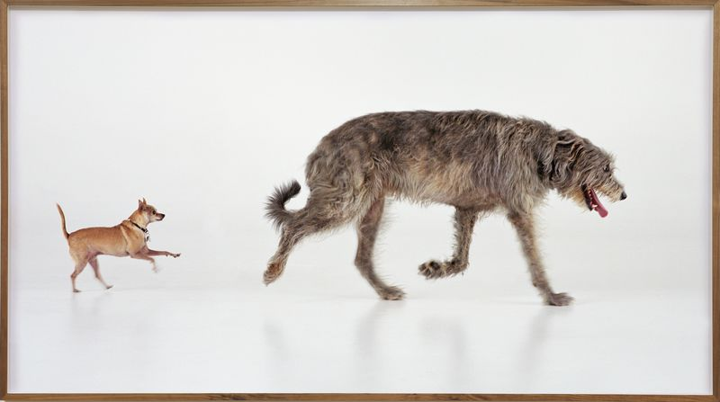Artwork related to exhibition: Martin Creed  'Mothers'